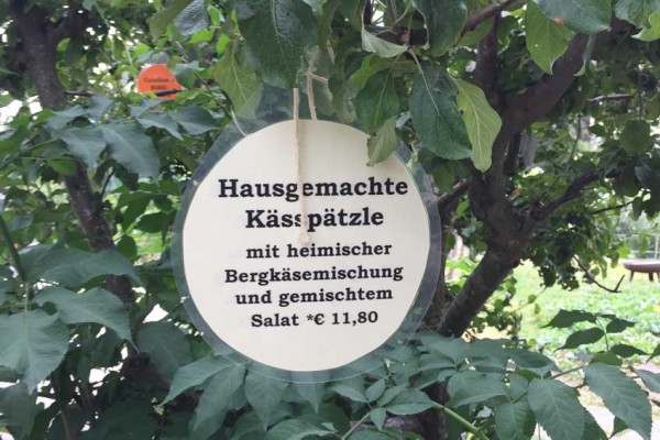spaetzle-frisch-vom-baum